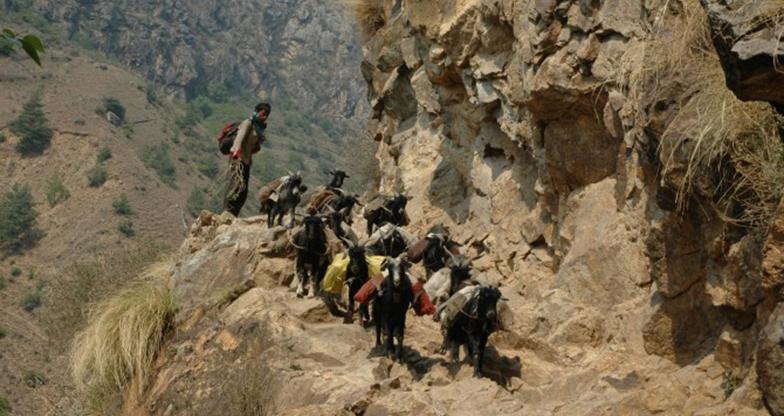Mount Kailash-Lhasa Trekking
