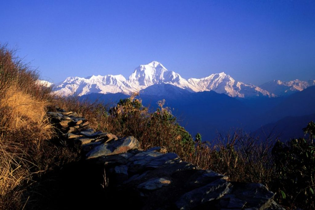 short trekking ghorepani