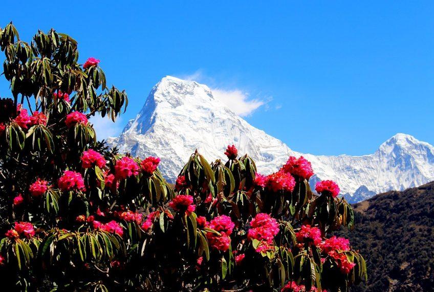 Trekking Season in Nepal