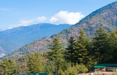 Bhutan Nature Tours