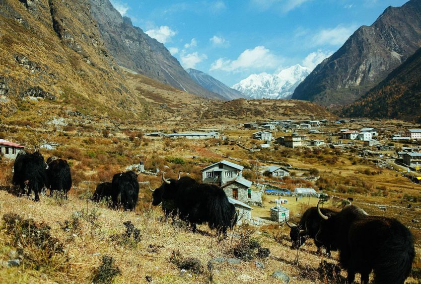 Langtang Village Before and After the Earthquake