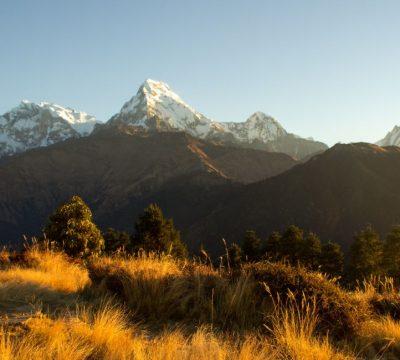 Ghorepani-Poonhill-Ghandruk Trek