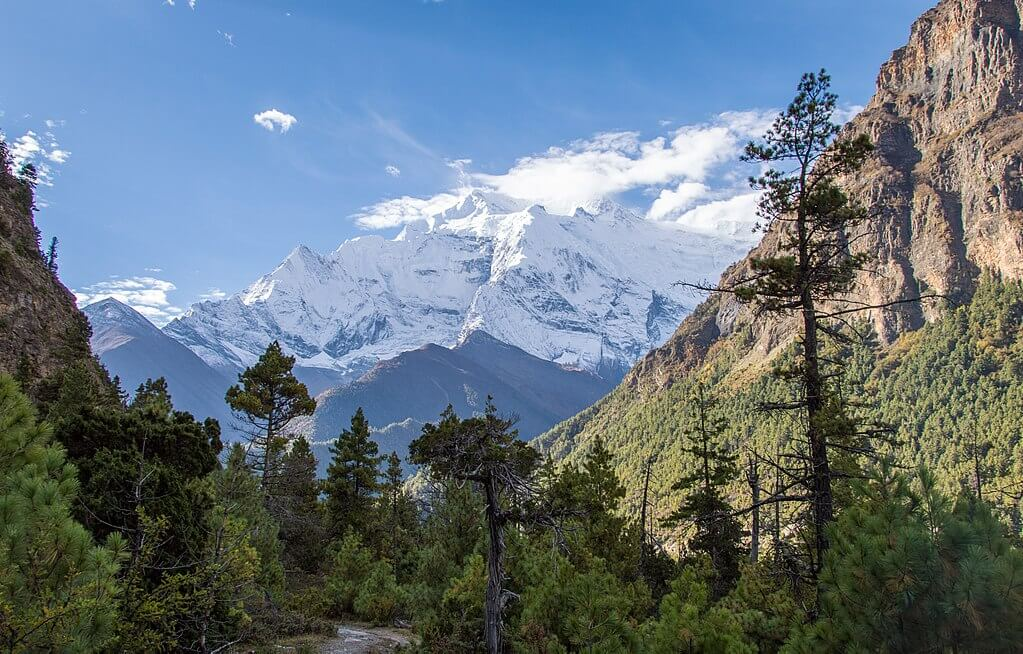 Panoramic Himalayas