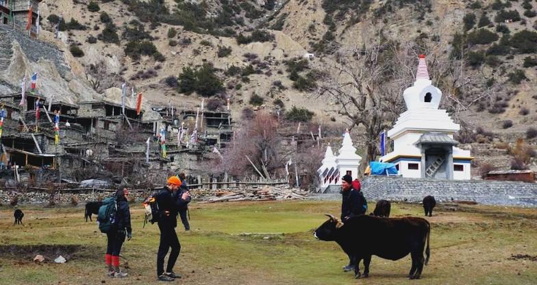 15 days Annapurna Circuit Trekking (9)