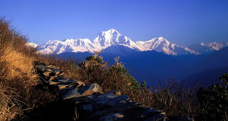 8 days Ghorepani-Poonhill Trek (5)