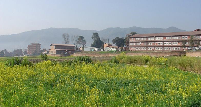A Day Hike to Phulchowki Kathmandu (4)