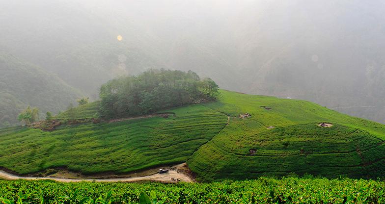 A Day Hike to Phulchowki Kathmandu (5)