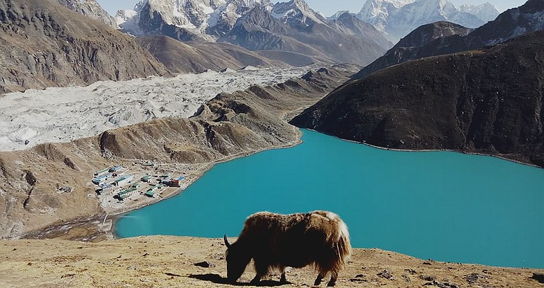 Everest Base Camp – Cho-La Pass – Gokyo Trek2