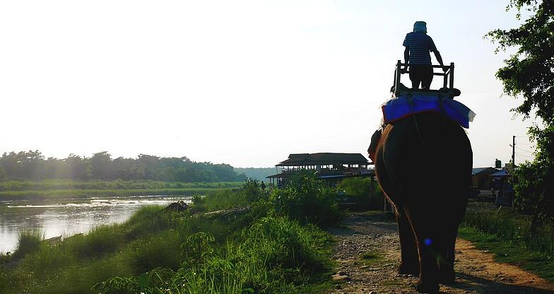 Jungle Safari at Chitwan National Park (1)