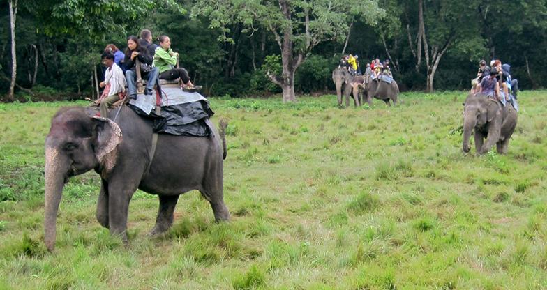 Jungle Safari at Chitwan National Park (4)