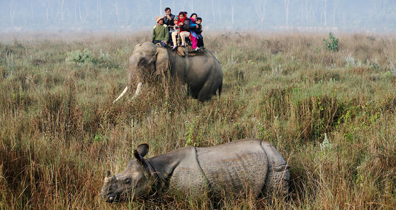 Jungle Safari at Chitwan National Park (9)