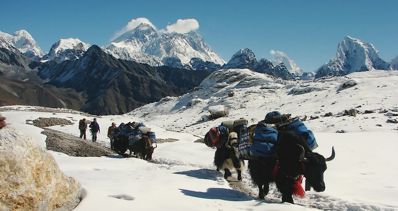 12 days Gokyo-Renjo-La Pass Trek3