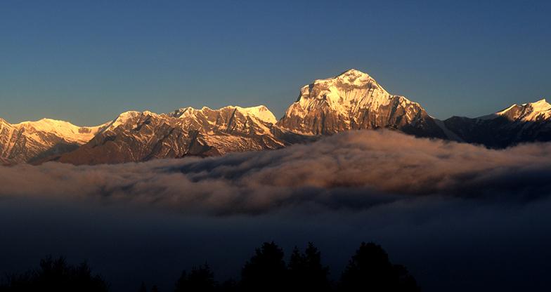 5 days Ghorepani-Poonhill Trek (4)
