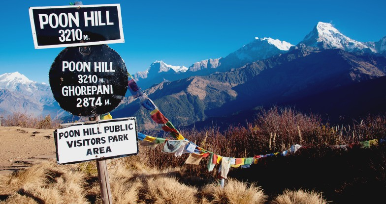 9 days Annapurna Panorama Trek (3)