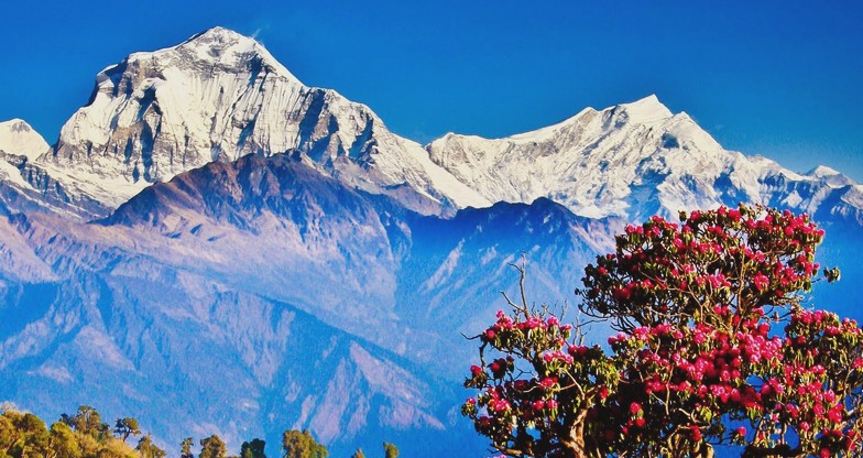 9 days Annapurna Panorama Trek